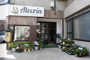 FLORISTERÍA ALECRÍN